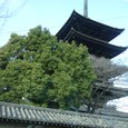 東寺に向かう